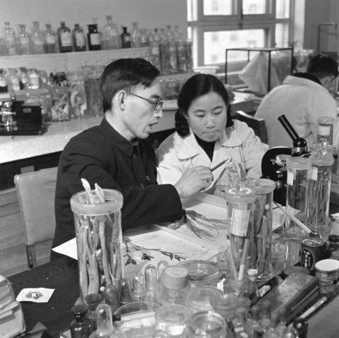 Youyou Tu et son tuteur Luo Zhicheng (1951) © auteur inconnu, domaine public