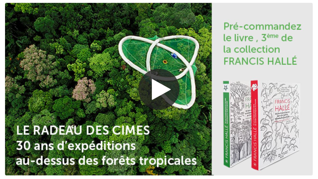 30 ans d'expéditions au-dessus des forêts tropicales de la planète réunis dans un livre. © éditions Museo